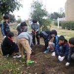 畑プロジェクト12月14日の様子