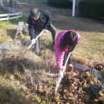 畑プロジェクト12月28日の様子
