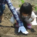 畑プロジェクト4月26日の様子