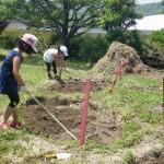 畑プロジェクト5月31日の様子