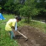 畑プロジェクト6月14日の様子