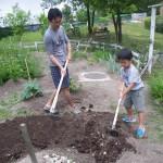畑プロジェクト6月21日の様子