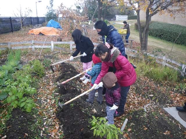 畑プロジェクト12月13日の様子